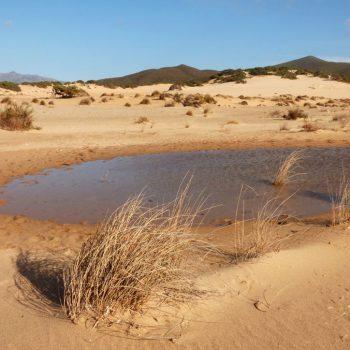 Spiaggia di Piscinas - ARBUS - costa verde